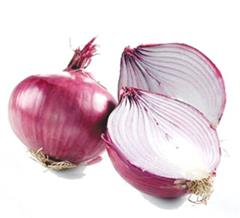 Onion - Pharmacognosy & Medicinal Uses