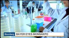 Bayer in talks to buy US agrochemical company Monsanto