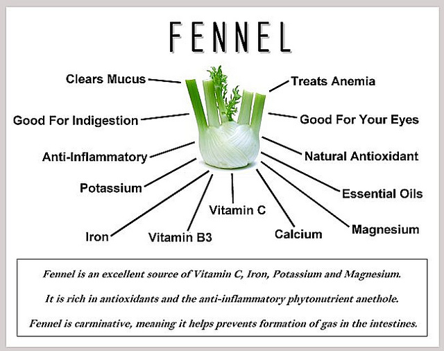 Nutritional Profile of Fennel