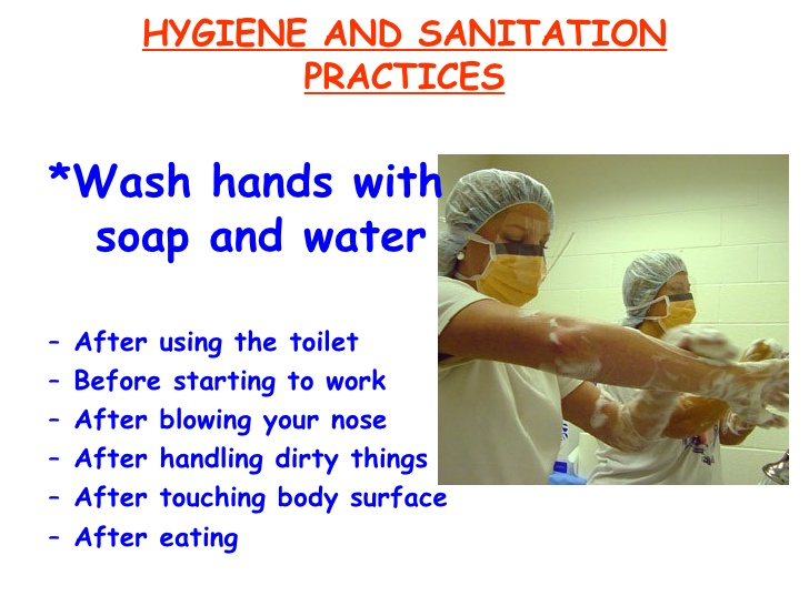 Sanitation and Hygiene Check List for GMP Audit | GMP | Quality